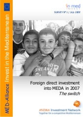 Foreign direct investment into MEDA...