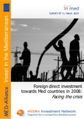 Foreign direct investment in the Me...
