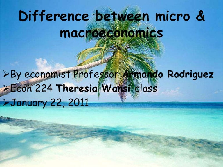 How different is Macroeconomics from Micro?