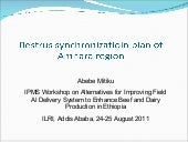 Oestrus synchronization plan of Amh...