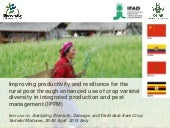 Improving productivity and resilience for the rural poor through enhanced use of crop varietal diversity in integrated production and pest management (IPPM)