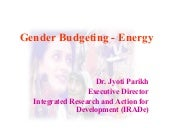Ira de gender energy budgeting