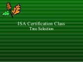 Isa tree selection