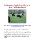 Is Farming Cattle Considered to Be a Viable Business