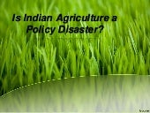 Is indian agriculture a policy disa...