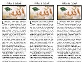 Islamic printout pamphlets