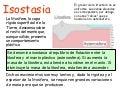 Isostasia