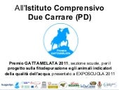 Istituto Comprensivo Due Carrare Pr...