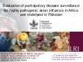 Evaluation of participatory disease surveillance  for highly pathogenic avian influenza in Africa and rinderpest in Pakistan