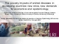 The poverty impacts of animal diseases in developing countries: new roles, new demands for economics and epidemiology