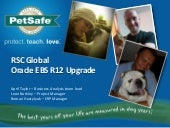 PetSafe IT/ERP portfolio and introduction to Oracle R12 Upgrade