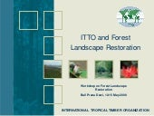 ITTO Guidelines Forest Restoration