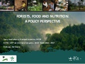 Forests, food and nutrition: A policy perspective
