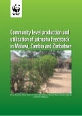 Community Level Production and Utilization of Jatropha Feedstock in Malawi, Zambia and Zimbabwe