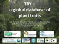 TRY - a global database of plant traits