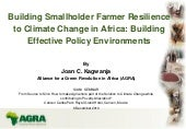 Building Smallholder Farmer Resilie...