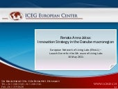 Innovation Strategy in the Danube m...