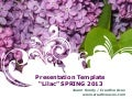 Presentation Template Apr2013 (Free Download)