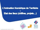 otf-intervention-sur-ant-20140520