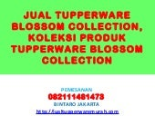 JUAL TUPPERWARE BLOSSOM COLLECTION,...