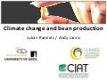 Julian R - Climate Change and Bean production