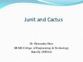 Junit and cactus