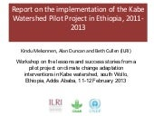 Report on the implementation of the...