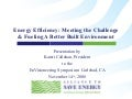 Energy Efficiency: Meeting the Challenge & Fueling A Better Built Environment