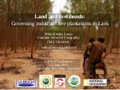 Land and livelihoods: governing industrial tree plantations in Laos