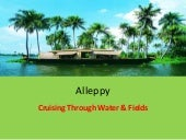 Kerala - Alleppy - Cruising through...