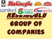 Keskinoglu group of companies1