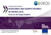 Investment and Competitiveness in C...
