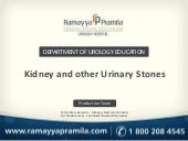 Kidney and urinary stone