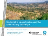 Keating - Sustainable intensificati...