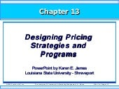 Designing Pricing Strategies and Pr...