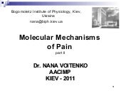 Molecular Mechanisms of Pain. Part 2