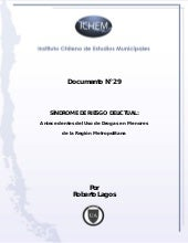 Documento de Trabajo N°29