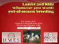 Lambs and Kids Whenever Your Want