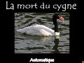 La mort du cygne - The dying swan