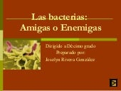 Las Bacterias Joselyn