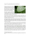 Layers of vegetation_water_retention_methods