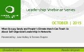 Webinar | Self Organized Leadership in Networks: Lessons from Occupy Sandy and the People's Climate March | October 21, 2015