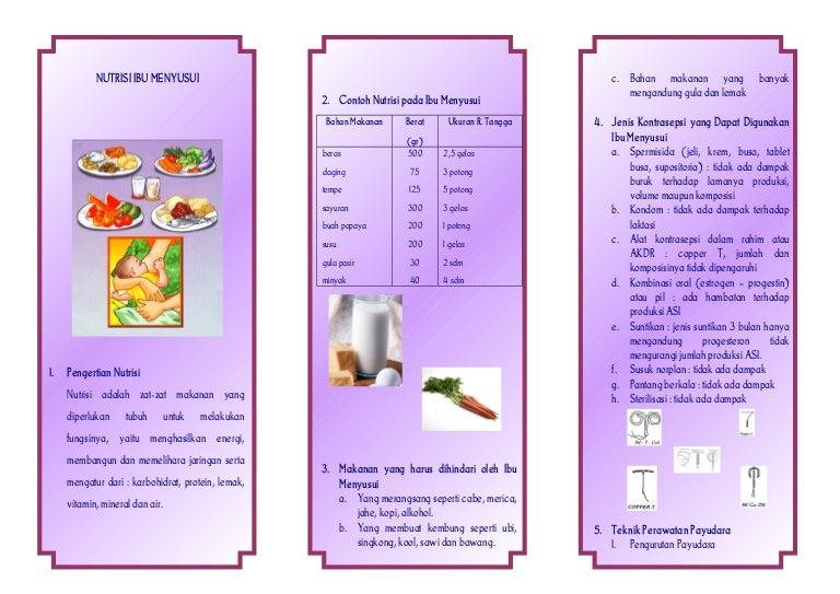 Gambar Nutrisi Ibu Menyusui Leaflet Nutrisi Ibu Menyusui a