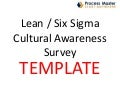 Lean six sigma culture survey