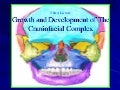 Growth and Development of Craniofacial Complex I