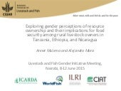 Exploring gender perceptions of resource ownership and their implications for food security among rural livestock owners in Tanzania, Ethiopia, and Nicaragua