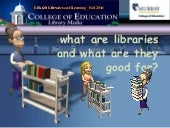 What are Libraries Good For?