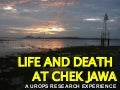 Life And Death at Chek Jawa
