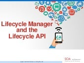 Lifecycle Manager and the Lifecycle API