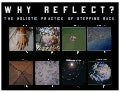 Why Reflect? The Holistic Practice of Stepping Back.